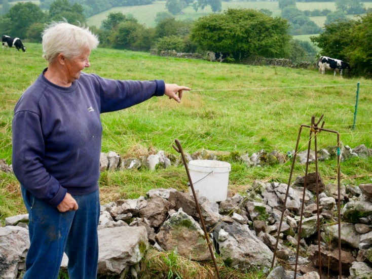 Janet Holt; dry stone walls